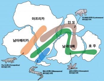 대륙이동설의 근거로 제시되는 화석 분포 위치 - 위키미디어 제공